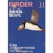 BIRDER (バーダー) 2019年 11月号 [雑誌]