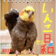 いんこ日和週めくりカレンダー 2020 [単行本]