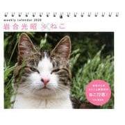岩合光昭×ねこweekly calendar 2020 [単行本]