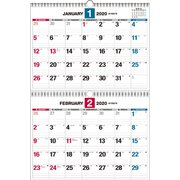 ダブルリング式2ヵ月シンプルカレンダーB3 2020年 [ムックその他]