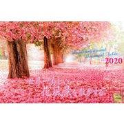 世界一美しい花風景を散歩する 2020[カレンダー] [単行本]