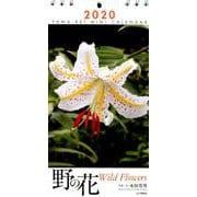 ミニカレンダー野の花 2020 [ムックその他]