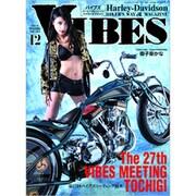 VIBES(バイブス) 2019年 12月号 [雑誌]