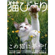 猫びより 2020年 03月号 [雑誌]
