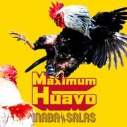Maximum Huavo 通常盤