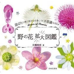 野の花拡大図鑑―道ばたに咲く花たちの美しくて不思議なカタチ [単行本]
