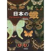 日本の蛾 [図鑑]