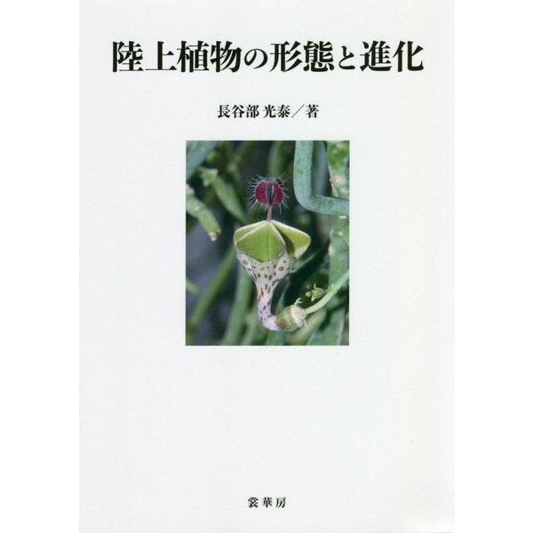 陸上植物の形態と進化 [単行本]