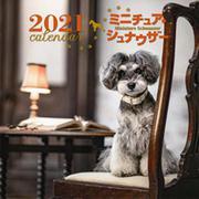 2021年 大判カレンダー ミニチュア・シュナウザー(誠文堂新光社カレンダー) [ムックその他]