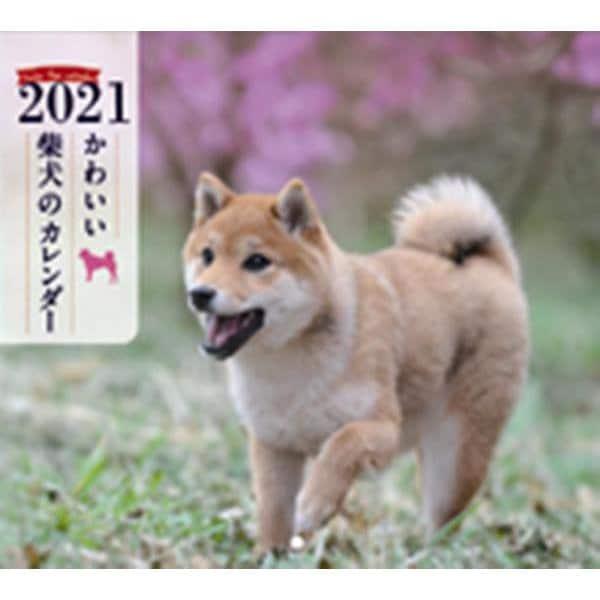 2021年 ミニ判カレンダー かわいい柴犬のカレンダー(誠文堂新光社カレンダー) [ムックその他]