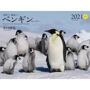 2021年 ワイド判カレンダー 世界で一番美しいペンギン カレンダー(誠文堂新光社カレンダー) [ムックその他]