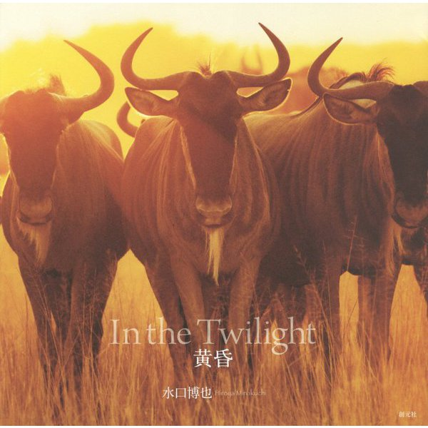黄昏 In the Twilight [単行本]