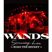 WANDS Streaming Live ~BURN THE SECRET~