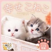 ましかく子猫カレンダー幸せこねこ 2022 [単行本]