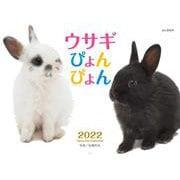 ウサギぴょんぴょんカレンダー 2022 [単行本]