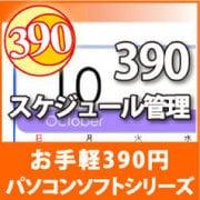 390 スケジュール管理 [ダウンロードソフトウェア Win専用]