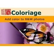 AKVIS Coloriage [Windowsソフト ダウンロード版]