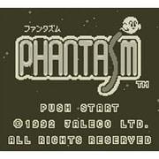 ファンタズム <ゲームボーイ> [3DSソフト ダウンロード版 Virtual Console(バーチャルコンソール)]
