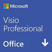 Visio Professional 2019 日本語版 (ダウンロード) [Windowsソフト ダウンロード版]