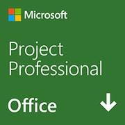 Project Professional 2019 日本語版 (ダウンロード) [Windowsソフト ダウンロード版]