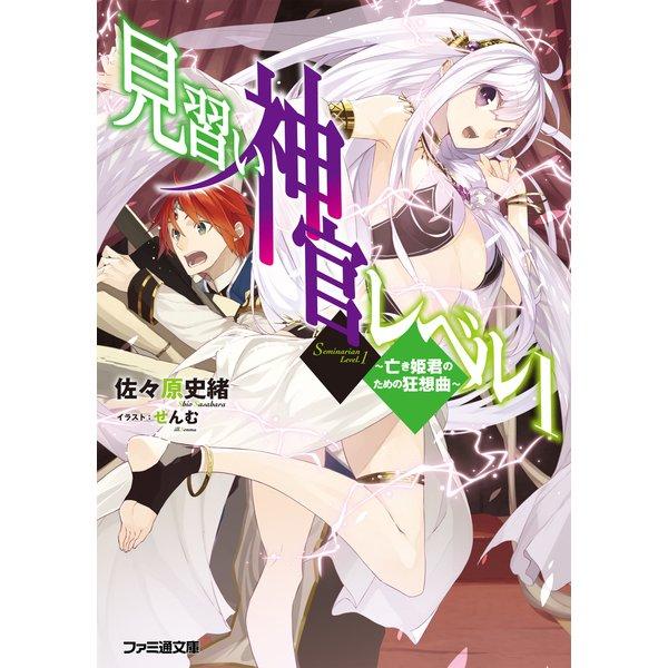 見習い神官レベル1(3) ~亡き姫君のための狂想曲~ 電子DX版(KADOKAWA) [電子書籍]
