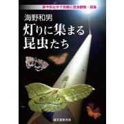 海野和男 灯りに集まる昆虫たち(誠文堂新光社) [電子書籍]