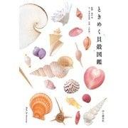 ときめく貝殻図鑑(山と溪谷社) [電子書籍]