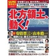 SAPIO(サピオ)別冊 「北方領土、動く!」(小学館) [電子書籍]