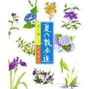 花を描こう 夏の散歩道 (マール社) [電子書籍]