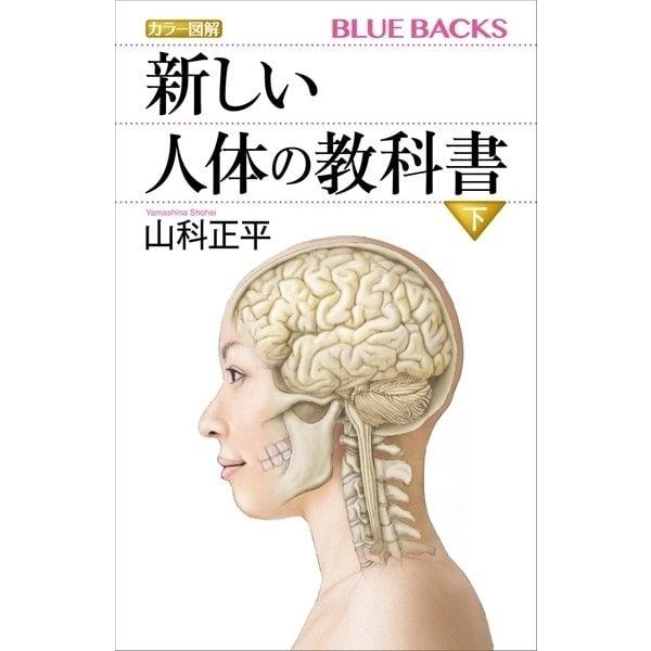 カラー図解 新しい人体の教科書 下(講談社) [電子書籍]
