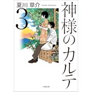 神様のカルテ3(小学館) [電子書籍]