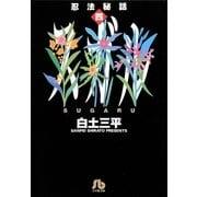 忍法秘話 4(小学館) [電子書籍]