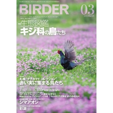 BIRDER(バーダー) 2018年3月号(文一総合出版) [電子書籍]