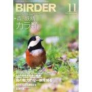 BIRDER(バーダー) 2018年11月号(文一総合出版) [電子書籍]