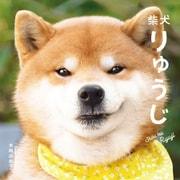 柴犬りゅうじ (パイ インターナショナル) [電子書籍]