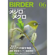 BIRDER(バーダー) 2019年6月号(文一総合出版) [電子書籍]