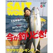 SALT WORLD 2019年6月号 Vol.136(エイ出版社) [電子書籍]