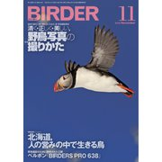 BIRDER(バーダー) 2019年11月号(文一総合出版) [電子書籍]