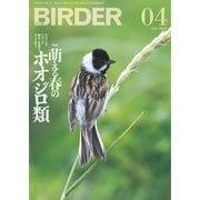BIRDER(バーダー) 2021年4月号(文一総合出版) [電子書籍]