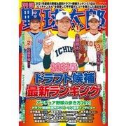 別冊野球太郎 (2021春)ドラフト候補最新ランキング(imagineer) [電子書籍]