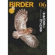 BIRDER(バーダー) 2021年6月号(文一総合出版) [電子書籍]