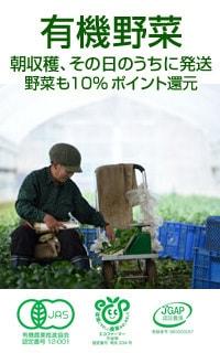 有機野菜 好評販売中