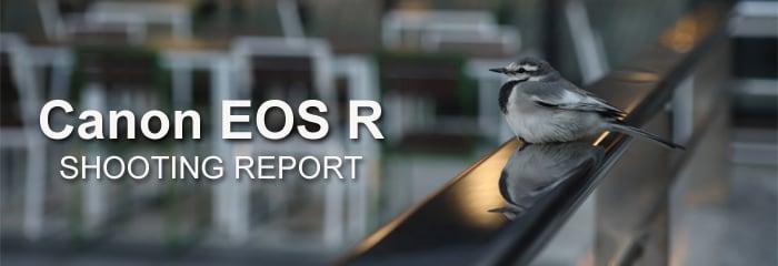 フォトヨドバシ Canon EOS R 実写レビュー