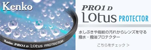 PRO1D Lotus