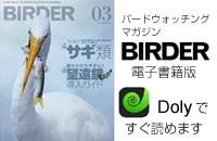 BIRDER電子版