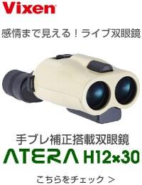 ATERA H12×30