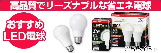 電球・蛍光灯
